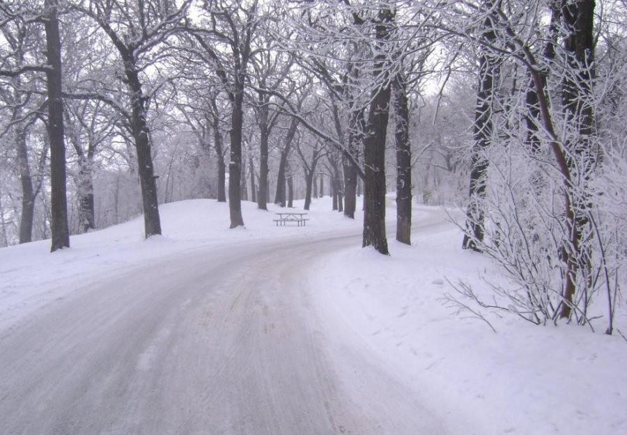 Winter Wonderland 0041